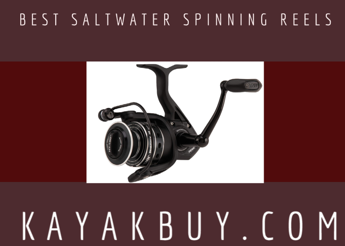 Best Saltwater Spinning Reels 2021